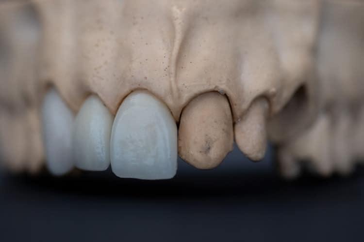 datos curiosos historia odontologia